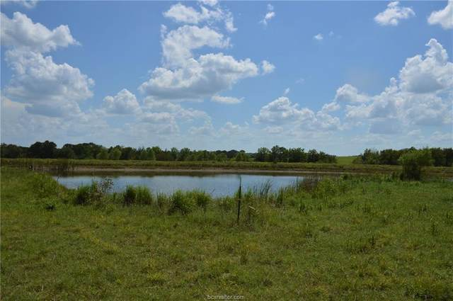 4278 Fm 149 - 15 Acres Road, Anderson, TX 77830 (MLS #21000746) :: Treehouse Real Estate