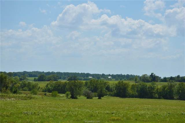 4278 Fm 149 - 31 Acres Road, Anderson, TX 77830 (MLS #21000747) :: Treehouse Real Estate