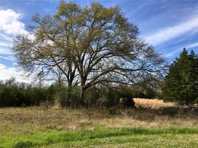 9905 Scarborough Drive, Iola, TX 77861 (MLS #21000855) :: Treehouse Real Estate