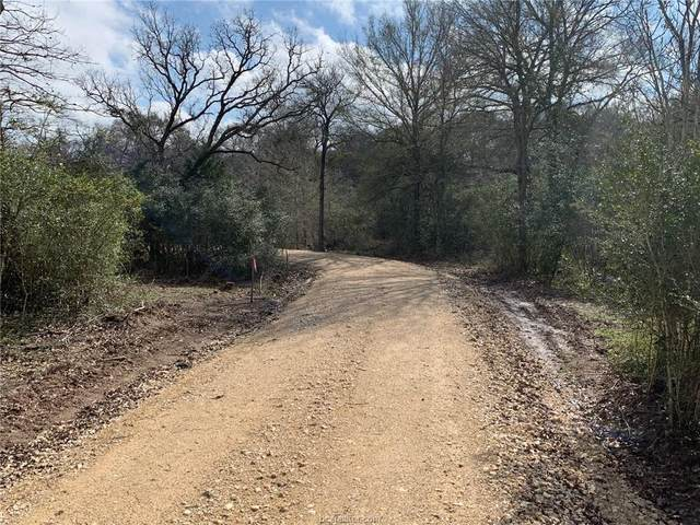 18965 Meadows Overlook Lane, College Station, TX 77845 (MLS #21001131) :: RE/MAX 20/20