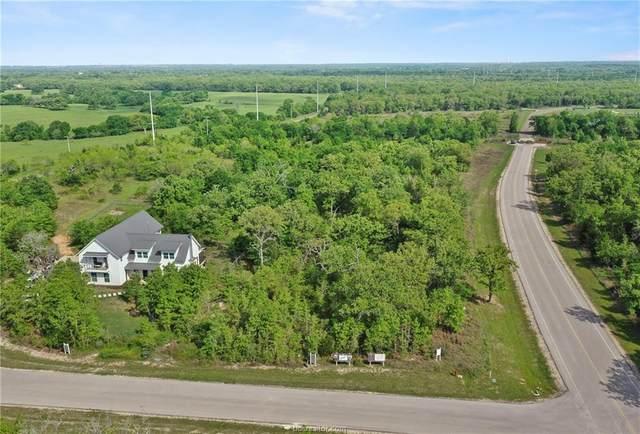 19399 Moonlit Hollow Loop, College Station, TX 77845 (MLS #21001479) :: RE/MAX 20/20