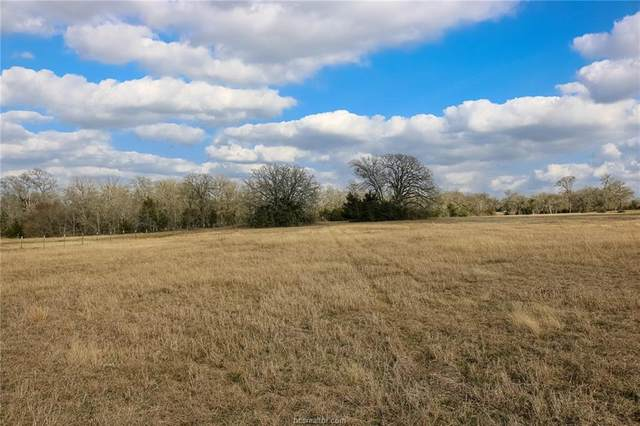 TBD County Rd 180, Anderson, TX 77830 (MLS #21001990) :: Treehouse Real Estate