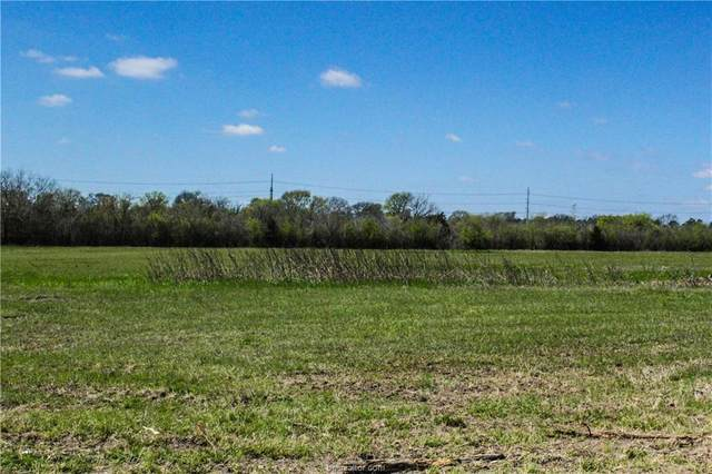 Lot 8 County Road 220, Anderson, TX 77830 (MLS #21002053) :: NextHome Realty Solutions BCS