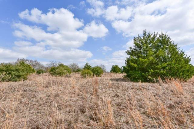 (+-/- 100 Ac) TBD Discovery Lane, Franklin, TX 77856 (MLS #21002208) :: My BCS Home Real Estate Group
