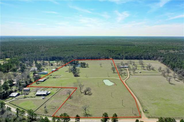24913 Riley Road, Plantersville, TX 77363 (#21002870) :: ORO Realty