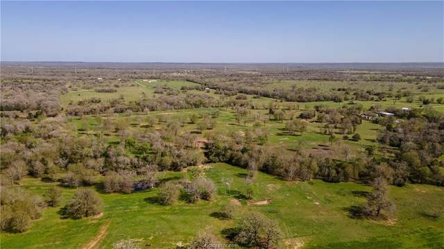 8097 Sun Belt Road, Iola, TX 77861 (MLS #21002884) :: Cherry Ruffino Team