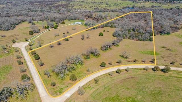 Tract 3 Lake Victoria Drive, Navasota, TX 77868 (MLS #21004672) :: Chapman Properties Group