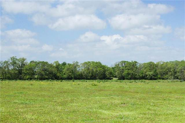 0054 County Road 229, Bedias, TX 77831 (MLS #21004719) :: Cherry Ruffino Team
