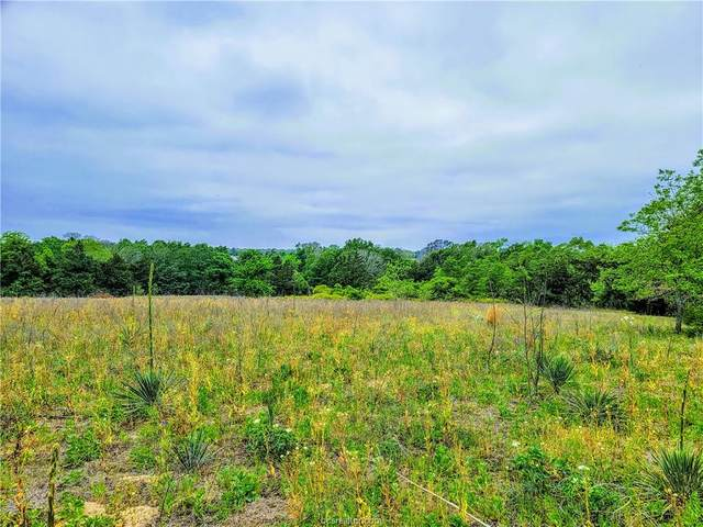 TBD Blue Fire Lane, Franklin, TX 77856 (#21005024) :: ORO Realty
