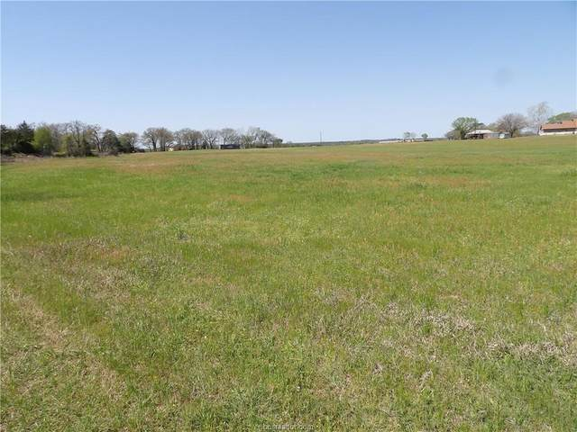 1781 Cr 106, Paige, TX 78659 (MLS #21005043) :: Chapman Properties Group