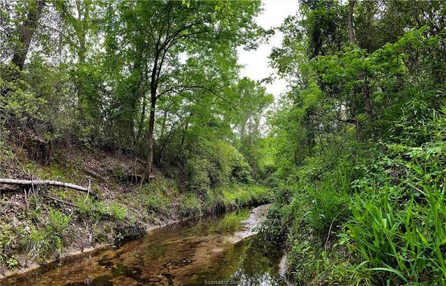 26 +/- acres Old Boone Prairie Rd., Franklin, TX 77856 (MLS #21005108) :: Treehouse Real Estate
