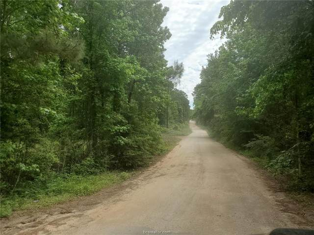 Lot 1 Magnolia Springs, Plantersville, TX 77363 (MLS #21005124) :: Cherry Ruffino Team