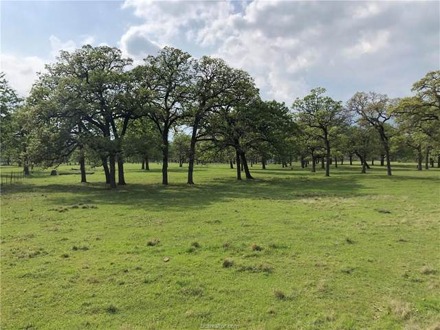 0000 Peach Creek Rd, College Station, TX 77845 (#21005175) :: ORO Realty