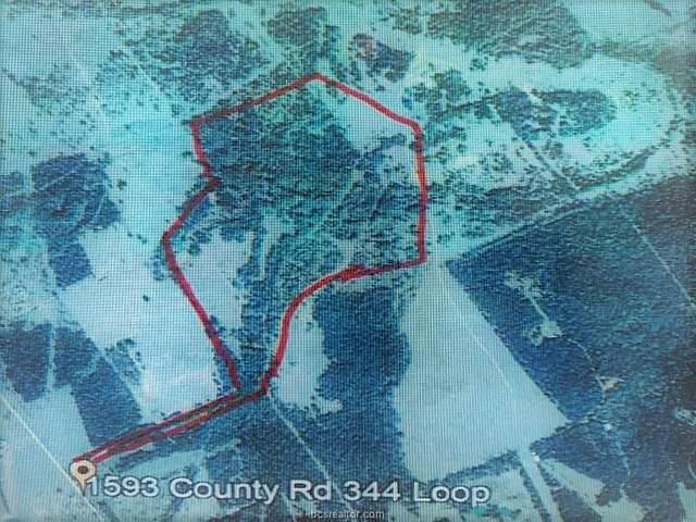 1593 Cr 344 County Road, Milano, TX 76556 (MLS #21005217) :: Cherry Ruffino Team