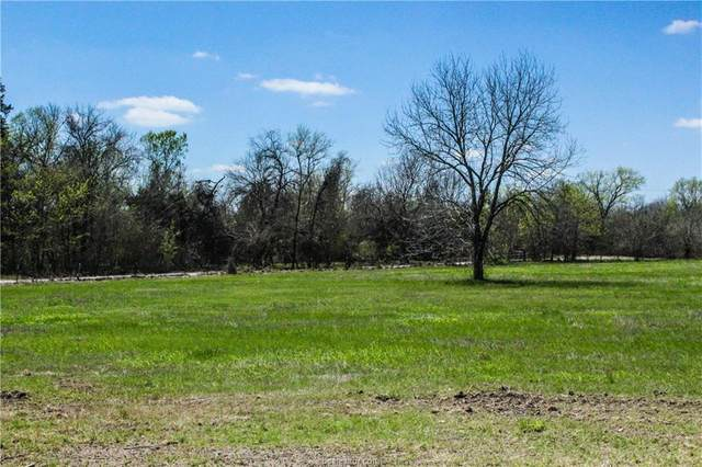 LOT 10 County Road 220, Anderson, TX 77830 (MLS #21006582) :: RE/MAX 20/20