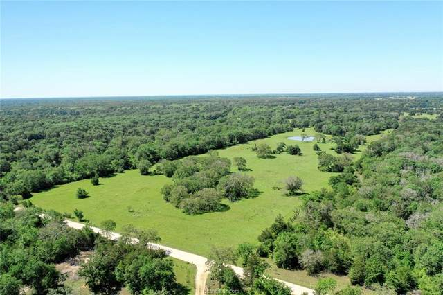 TBD Deep Well Road, Bryan, TX 77808 (MLS #21006857) :: Treehouse Real Estate