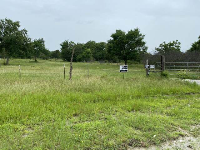 11129 Independence Drive, Bedias, TX 77831 (MLS #21007559) :: Chapman Properties Group