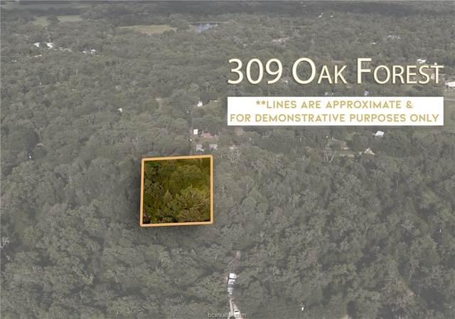 309 Oak Forest Road, Somerville, TX 77879 (#21008383) :: ORO Realty