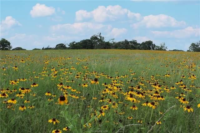 0000 Smetana Road, Bryan, TX 77807 (MLS #21009494) :: Treehouse Real Estate