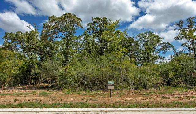 1813 Duval River Ct, College Station, TX 77845 (MLS #21009512) :: Treehouse Real Estate