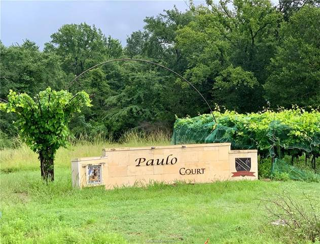 5037 Paulo Court, Bryan, TX 77808 (MLS #21009994) :: Treehouse Real Estate