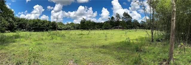 Lot 1 & 2 TBD Fm 2446 Farm To Market Road, Franklin, TX 77856 (MLS #21010160) :: The Lester Group