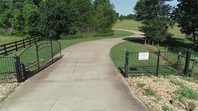 53 W Pecan Hills Drive, Plantersville, TX 77363 (MLS #21010218) :: The Lester Group
