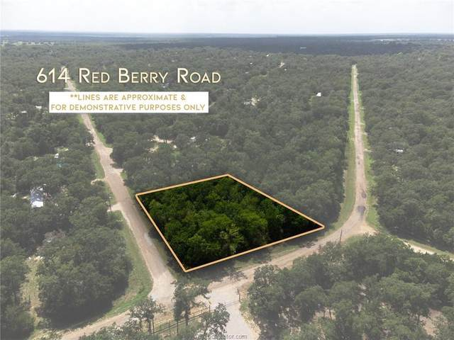 614 Redberry Road, Somerville, TX 77879 (MLS #21011327) :: The Lester Group