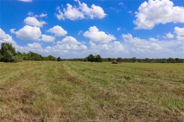 Lot 18 County Rd 219, Anderson, TX 77830 (MLS #21011369) :: Cherry Ruffino Team