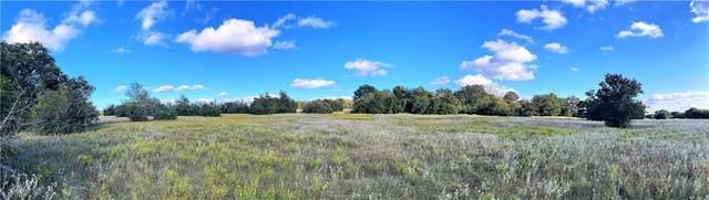 Lot 13 TBD Fm 2446 Farm To Market Road, Franklin, TX 77856 (MLS #21012943) :: NextHome Realty Solutions BCS