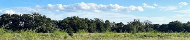 Lot 20 TBD Old Hickory Grove Rd Farm To Market Road, Franklin, TX 77856 (MLS #21012953) :: NextHome Realty Solutions BCS