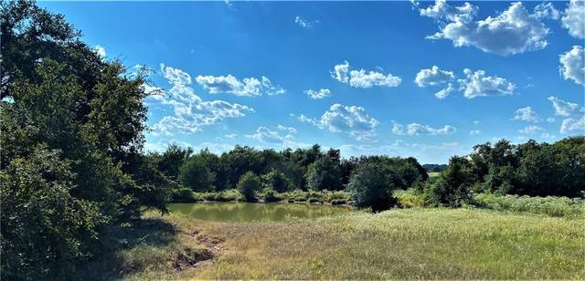 Lot 21 TBD Old Hickory Grove Rd County Road, Franklin, TX 77856 (MLS #21012954) :: NextHome Realty Solutions BCS