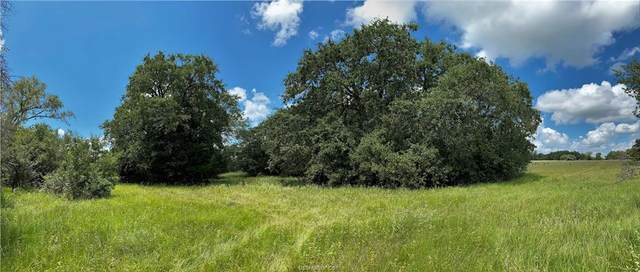 Lot 23 TBD Old Hickory Grove Rd County Road, Franklin, TX 77856 (MLS #21012957) :: NextHome Realty Solutions BCS