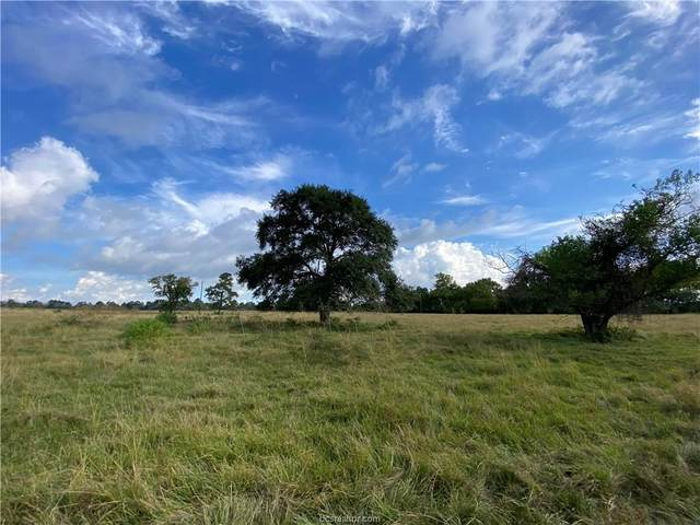 74.38 Acres County Road 202, Plantersville, TX 77363 (MLS #21013504) :: NextHome Realty Solutions BCS