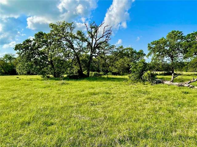 Lot 9 Bria Bend Drive, Caldwell, TX 77836 (MLS #21013625) :: Treehouse Real Estate