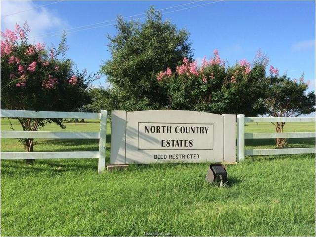 4756 Blazing Trail, Bryan, TX 77808 (MLS #1500406) :: Cherry Ruffino Realtors