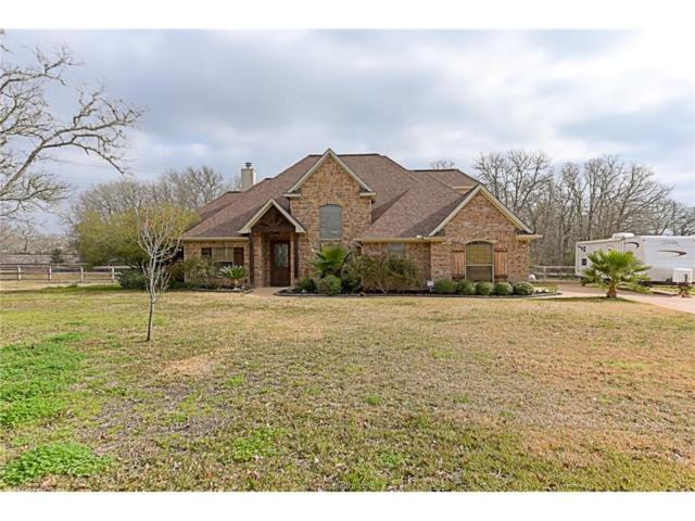 18361 Wigeon Trail, College Station, TX 77845 (MLS #16002478) :: Cherry Ruffino Realtors