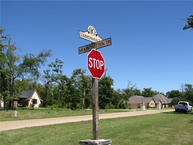 9935 Mountbatten Trail, Iola, TX 77861 (MLS #17004004) :: Platinum Real Estate Group