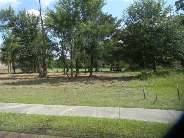 3125 Palmetto Lane, Bryan, TX 77807 (MLS #17005662) :: Platinum Real Estate Group