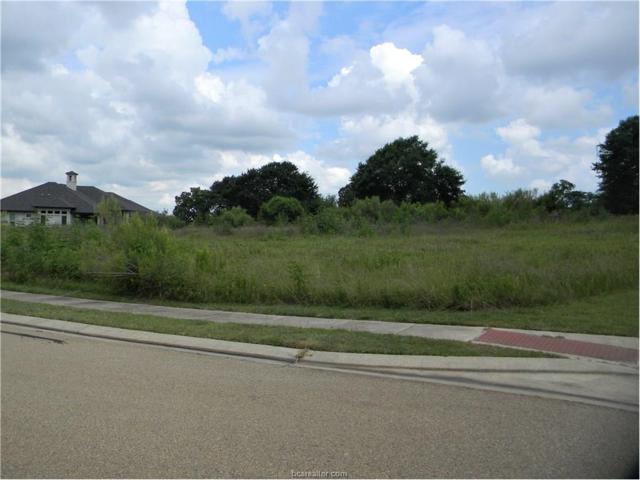 3320 Emory Oak Drive, Bryan, TX 77807 (MLS #17006263) :: Platinum Real Estate Group