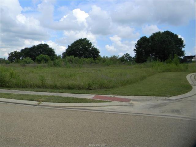 3322 Emory Oak Drive, Bryan, TX 77807 (MLS #17006267) :: Platinum Real Estate Group
