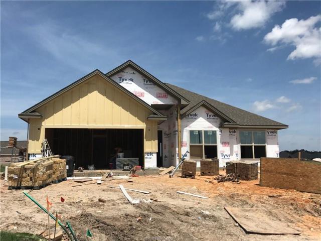 15602 Walnut Nook, College Station, TX 77845 (MLS #17011081) :: Cherry Ruffino Realtors