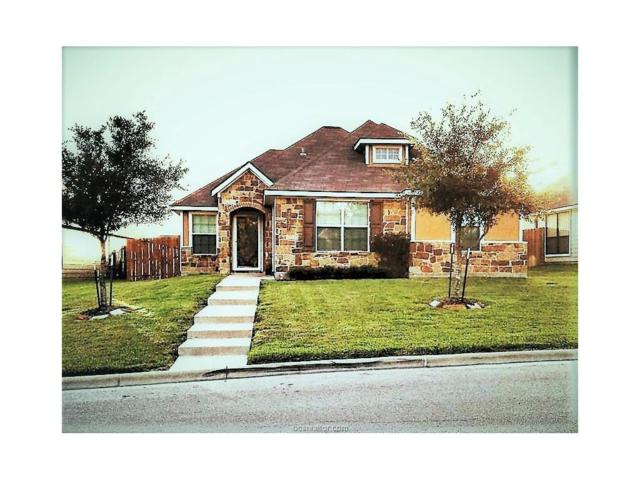 2037 Autumn Lake Drive, Bryan, TX 77807 (MLS #17011540) :: The Lester Group