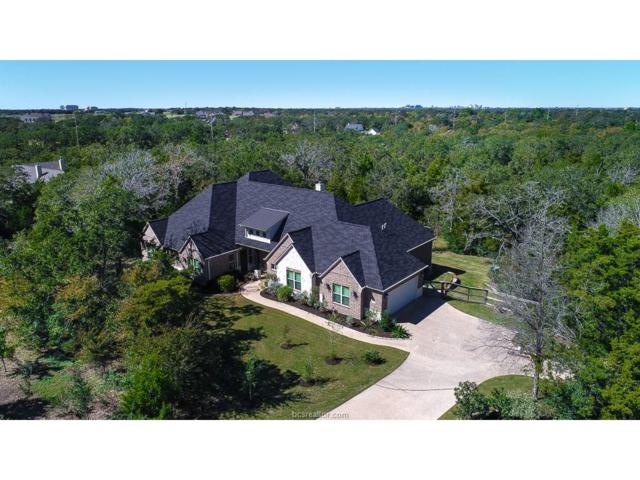 5217 Ruddy Duck Drive, College Station, TX 77845 (MLS #17015867) :: The Lester Group