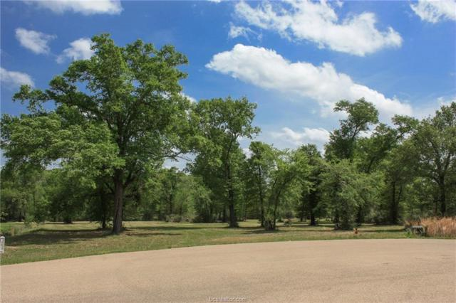 10222 Wessex Bend, Iola, TX 77861 (MLS #18006640) :: The Lester Group
