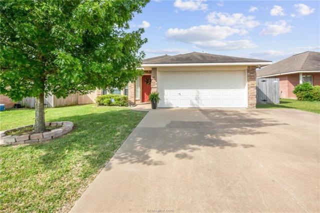 3510 Wild Plum Street, College Station, TX 77845 (MLS #18008721) :: Cherry Ruffino Realtors