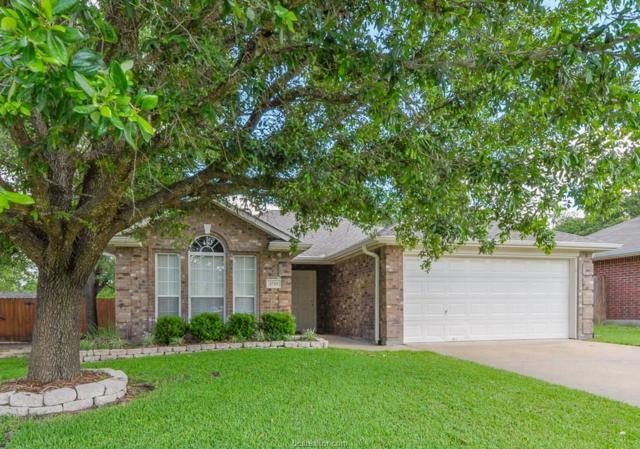 1710 Ibis Court, Bryan, TX 77807 (MLS #18009935) :: Cherry Ruffino Realtors