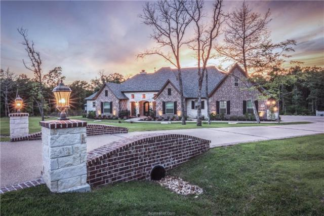 5384 Majestic Oak Court, College Station, TX 77845 (MLS #18012303) :: Platinum Real Estate Group