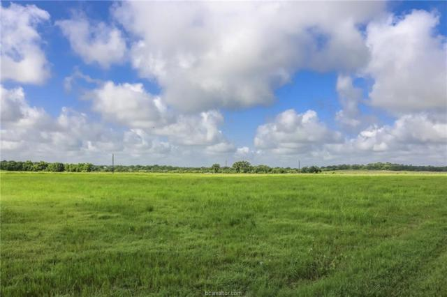 1678 County Rd 188, Anderson, TX 77830 (MLS #18012341) :: Platinum Real Estate Group