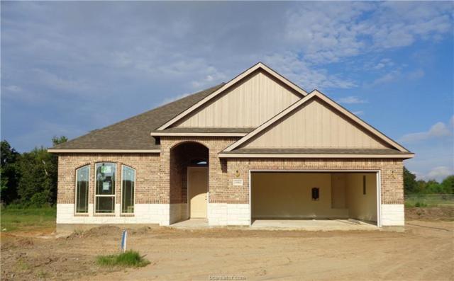 3062 Peterson Circle, Bryan, TX 77802 (MLS #18015792) :: Cherry Ruffino Team